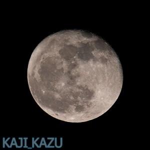 十七夜:立待月