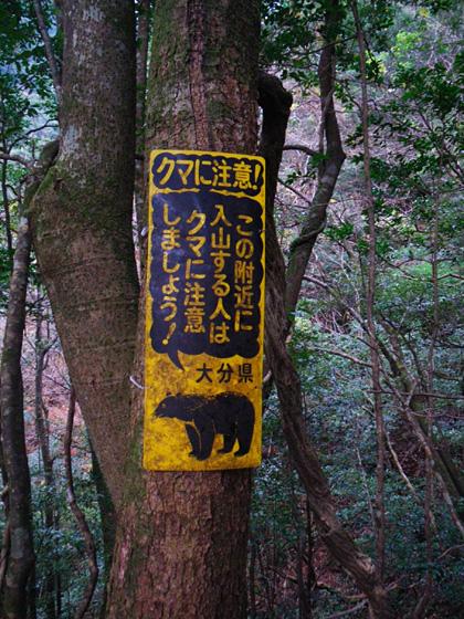 クマ注意の看板
