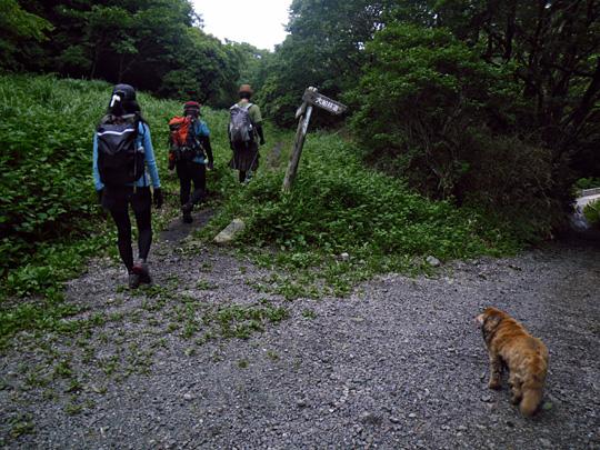 暮雨の滝コース