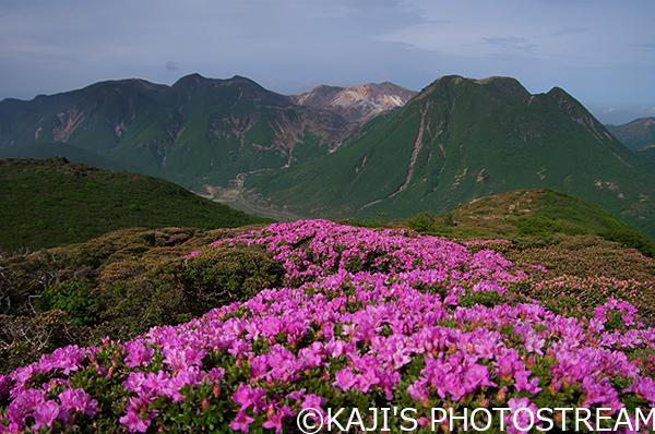 平治岳本峰